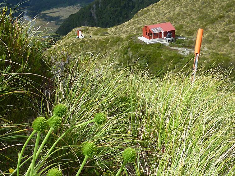 Views over Matukituki valley from Liverpool hut
