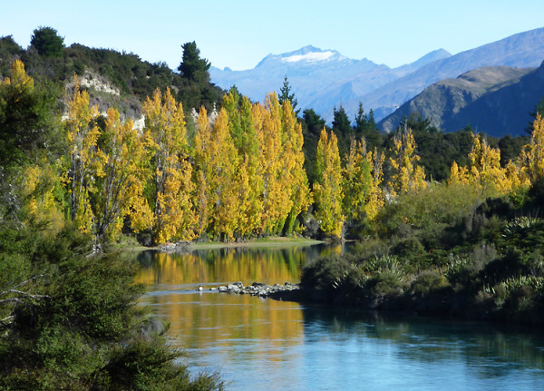 Lake wanaka autumn colours